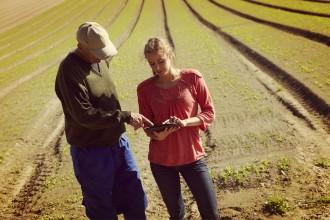 Digital agriculture image